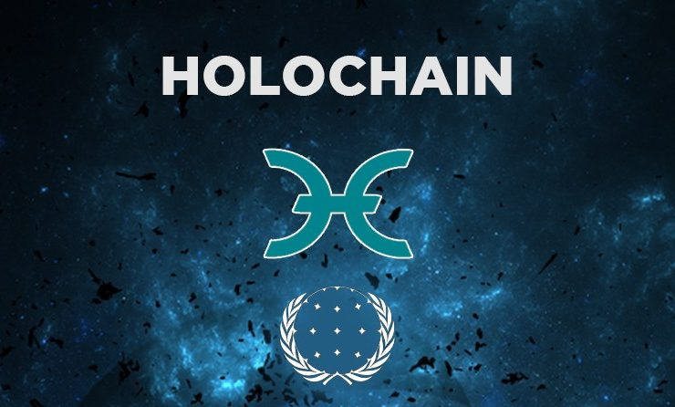 Will Holochain Price Rise High In Future? • Newbium